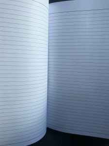 Blank journal pages