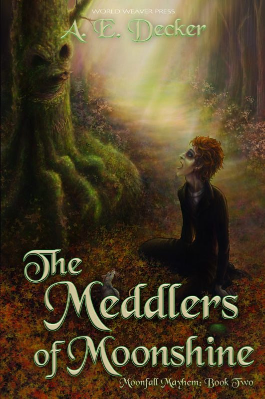 MEDDLERS OF MOONSHINE