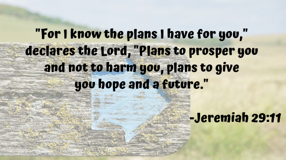bible verse Jeremiah 29:11 For I know the plans I have for you, declares the Lord